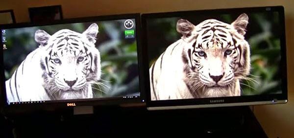 monitor ips vs tn  gaming grafica